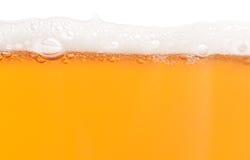 Bier mit Schaumgummi stockfoto