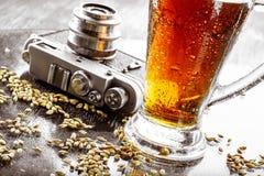 Bier, mout, hop stock foto's