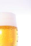 Bier op glas Stock Fotografie