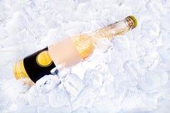 Bier op Ijs Royalty-vrije Stock Afbeelding