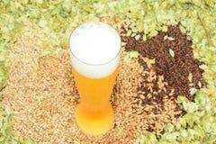 Bier in pilsener-glas royalty-vrije stock afbeeldingen