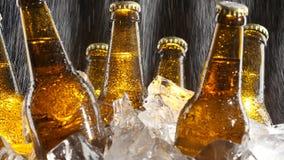 Bier steht im Eis, Wasserströme von oben, spritzt Fall auf dem Glas Schwarzer Hintergrund Abschluss oben stock footage