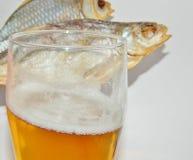 Bier, Trockenfisch Stockfotos