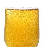 Bier und Luftblasen Lizenzfreie Stockfotos