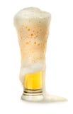 Bier und Schaumgummi lizenzfreies stockfoto
