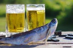 Bier und Snack zum Bier Lizenzfreie Stockbilder