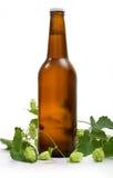 Bier und Zweig des Hopfens Stockfotografie