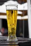 Bier van het vat stock foto