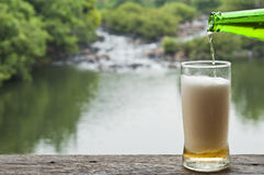Bier am Wasserfall. stockfoto