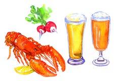Bier, zeekreeft en radijs Stock Foto