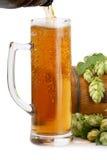 Bierbecher, Bierfaß der grünen Hopfen Lizenzfreies Stockfoto