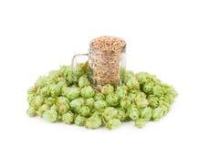 Bierdrinkbeker met hop Royalty-vrije Stock Afbeeldingen
