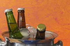Bieren op ijs Royalty-vrije Stock Fotografie