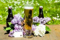 Bierflessen en bierglas op een rij, vader` s dag, exemplaarruimte Stock Foto