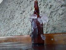 Bierflessen in ijs worden gekoeld dat stock fotografie