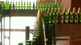 Bierflessen op fabriek productielijn De transportband van de drankindustrie stock videobeelden