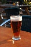 Bierglas Lizenzfreie Stockfotos