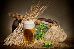 Bierglas Stockfotografie