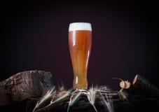 Bierkrug auf hölzernem Stamm lizenzfreie stockbilder