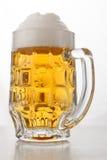 Biermok stock fotografie