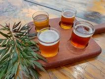 Bierprobieren im Freien stockbild