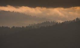 Bieszczady - βουνά στιλβωτικής ουσίας στοκ φωτογραφία