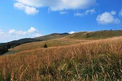 bieszczady горы стоковая фотография rf