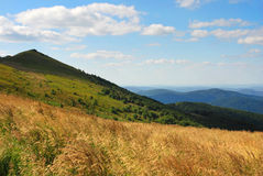 Bieszczady berg, Polonina Wetlinska Arkivfoton