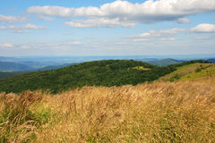 Bieszczady berg, Polonina Wetlinska Royaltyfria Bilder