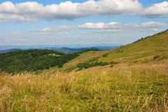 Bieszczady berg, Polonina Wetlinska Arkivbild
