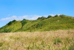 Bieszczady berg, Polonina Wetlinska arkivbilder