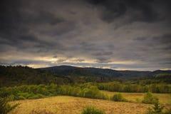 Bieszczady bergskog Royaltyfri Foto