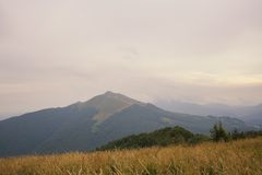 Bieszczady mountain landscape Stock Photography