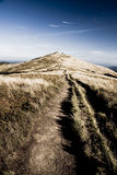 Bieszczady Mountains area in Poland Royalty Free Stock Photo