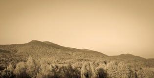 Bieszczady Mountains, Poland. Landscape of Poloniny range in Bieszczady Mountains, Poland Royalty Free Stock Photography