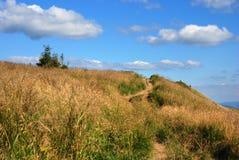 Bieszczady Mountains, Polonina Wetlinska. Wetlinski Poloniny vast spaces in the Bieszczady (Poland Royalty Free Stock Images