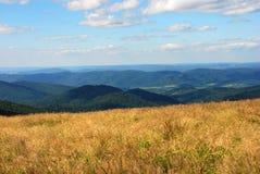 Bieszczady Mountains, Polonina Wetlinska. Wetlinski Poloniny vast spaces in the Bieszczady (Poland Stock Photos