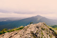 Bieszczady mountains. In south-east Poland, Polonina Wetlinska, Polonina Carynska stock images
