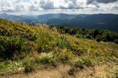 Bieszczady National Park in Poland. Royalty Free Stock Photography