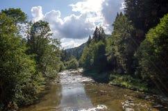 Bieszczady nationalpark i Polen Arkivfoton