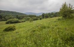 Bieszczadybergen, Zuid-Polen - groene weiden royalty-vrije stock afbeelding