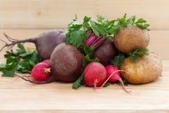 Bieten, aardappels, radijzen en kruiden Royalty-vrije Stock Afbeelding
