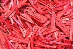 Bietola rossa Fotografia Stock