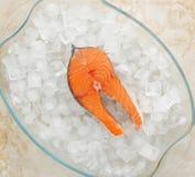 Bife cru dos salmões em cubos de gelo Fotografia de Stock Royalty Free