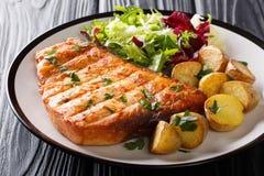 Bife de espadarte grelhado decorado com batatas fritadas e o close up fresco da salada na placa horizontal imagens de stock
