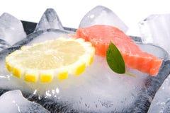 Bife de peixes Fotografia de Stock Royalty Free