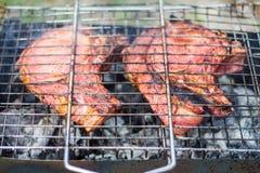 Bifes e grade da carne de porco no fogo ardente Foto de Stock