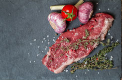 Biff för rått kött med nya örter och saltar Arkivbild