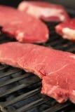Bifteck cru Images stock