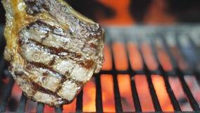 Bifteck délicieux sur griller la grille et la flamme, plan rapproché banque de vidéos